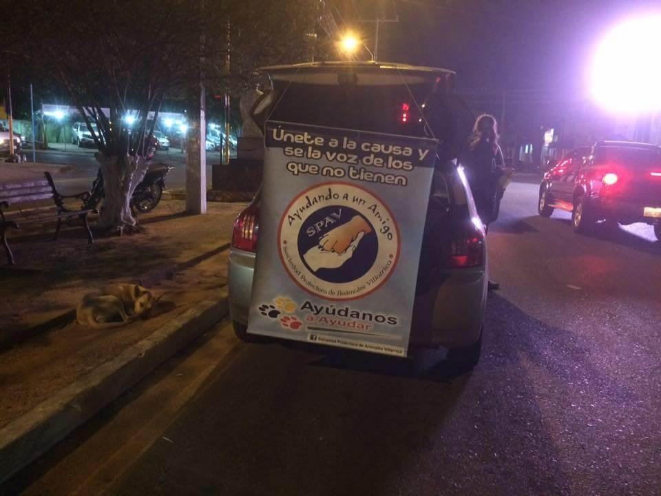 Auto mit Werbung für Tierschutz in Paraguay